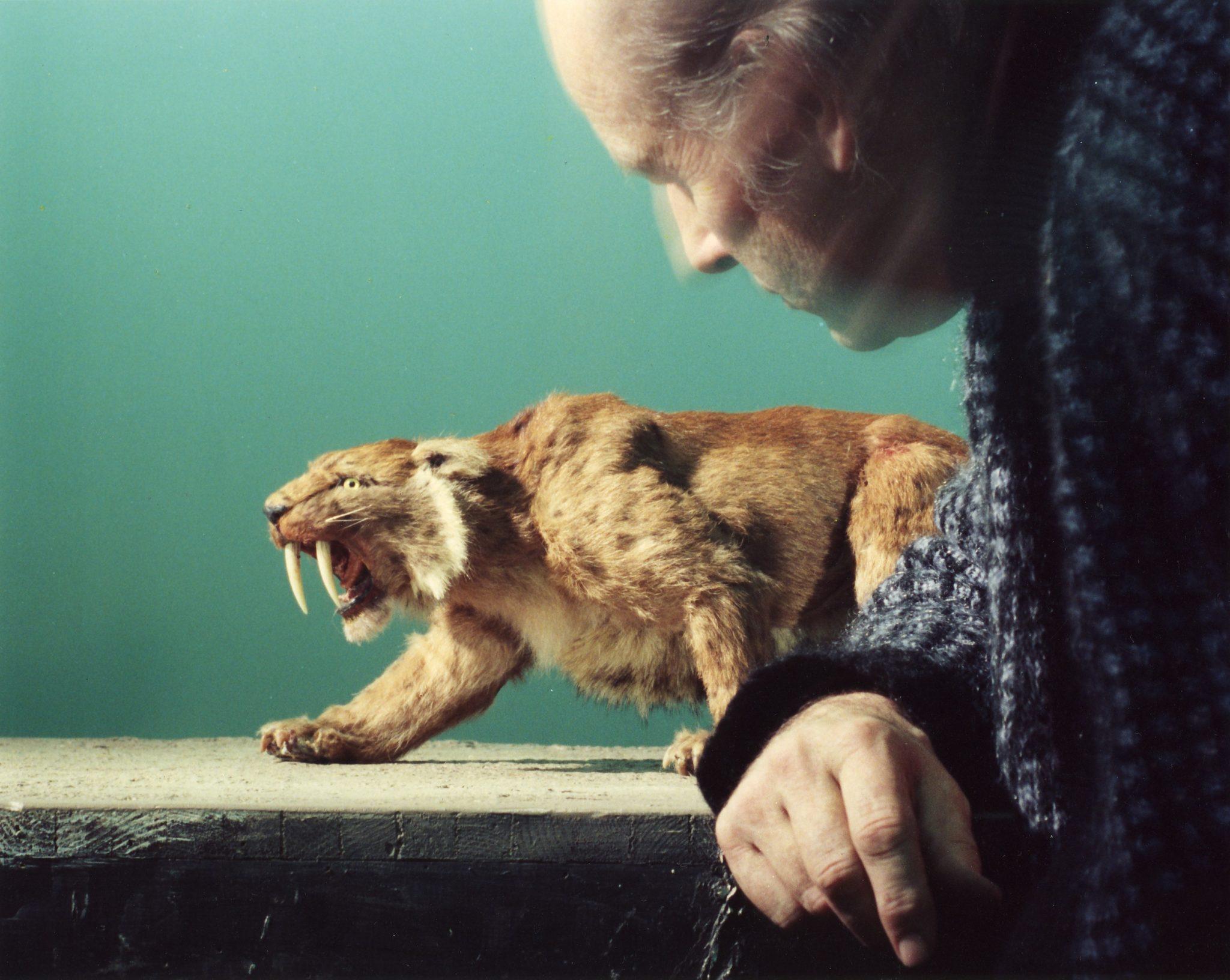 Ray Harryhausen Animating Tiger Ray Harryhausen 100 Years Exhibit at National Gallery of Scotland CMA