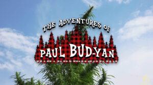 Paul Budyan
